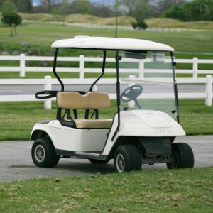 Carver Golf Cart